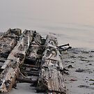 Driftwood, yes...but from what? by Corkle