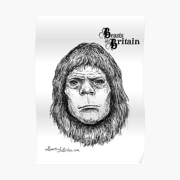 BOB - The Box Hill Ape   Poster