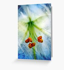 Abstract Lily Greeting Card