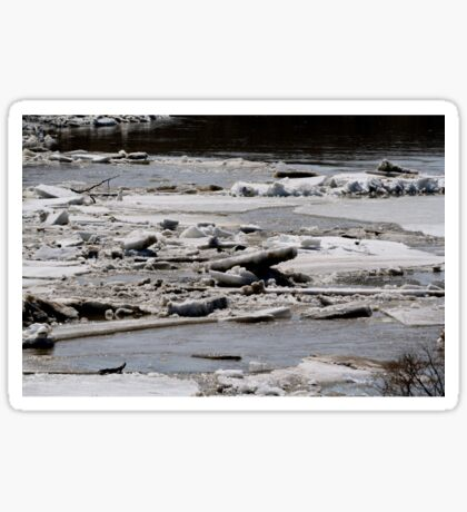 Ice Jams on the Red Sticker