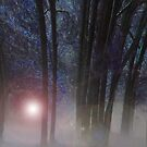 Enchanted Forest  by Louise Linossi Telfer