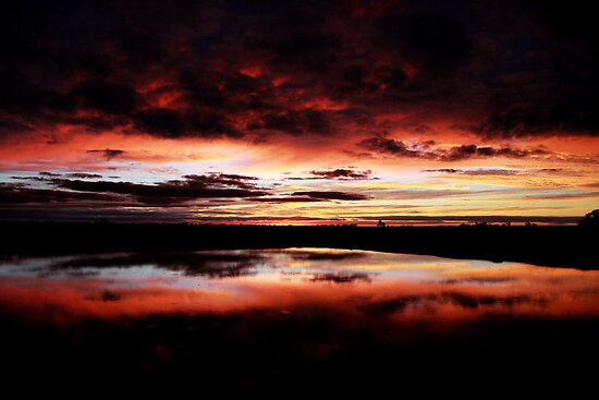 Sunset Reflection | Hay NSW by vanderson