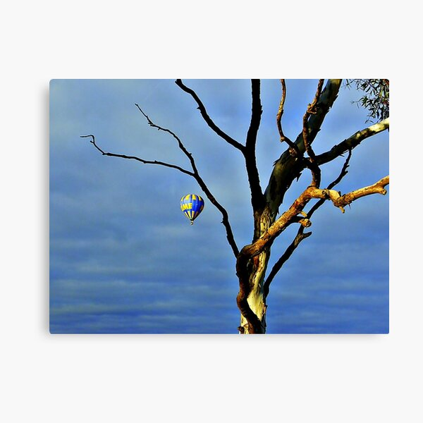 Barely A Tree Canvas Print