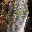 Florence Falls by Adrian Lord