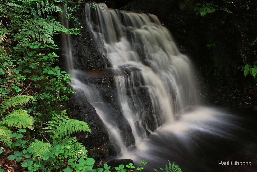 Tigers Clough Waterfall by spottydog06