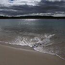 Safety Cove Beach - Tasmania, Australia by pocketdelight