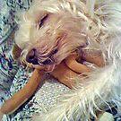 Sleeping Beauty by lisajns