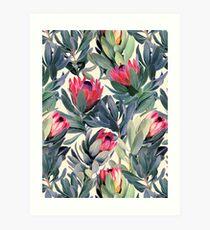 Lámina artística Patrón de Protea pintado