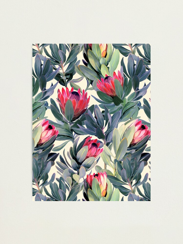 Alternate view of Painted Protea Pattern Photographic Print