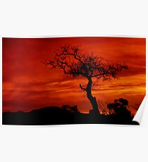 """""""Silhouettes at Sunrise"""" Poster"""