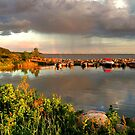 BALSAM BAY  by Larry Trupp