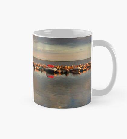 BALSAM BAY  Mug