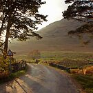 Wasdale, Cumbria by Mark Howells-Mead