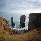 Elegug Stacks, Wales by Mark Howells-Mead