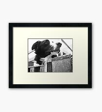 Typically Tina Framed Print