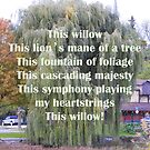 In Praise Of The Willow by KnutsonKr8tions