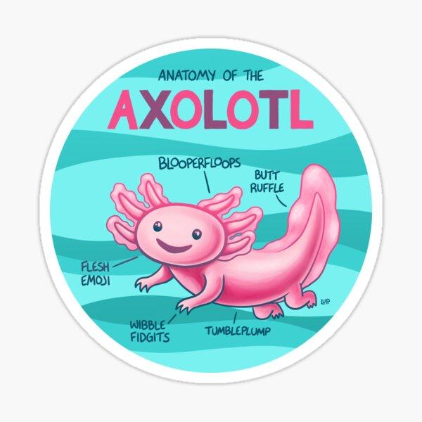 Anatomy of the Axolotl Sticker