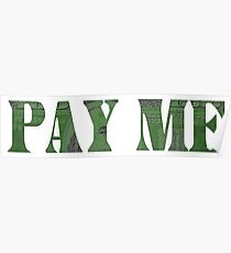 Pay Me Poster