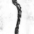 spine by James Suret