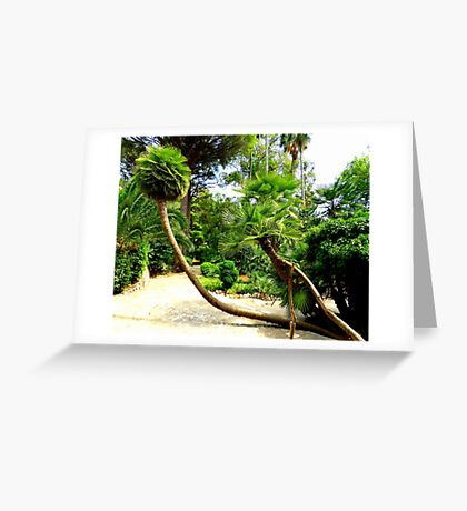 The Palms Of Alfabia..........................Majorca Greeting Card