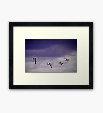 Fighter Squadron Framed Print