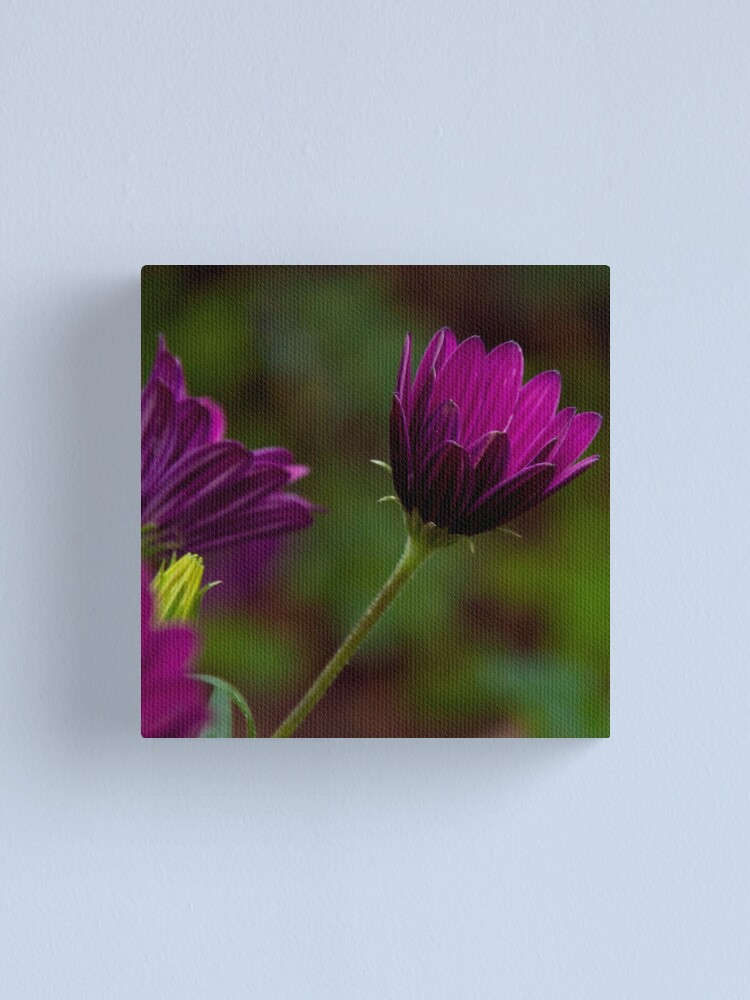 Alternate view of Purple bokeh  Canvas Print