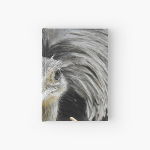 Greater Rhea, face-to-face Hardcover Journal