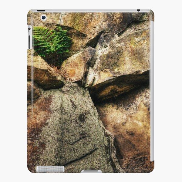 Fern iPad Snap Case