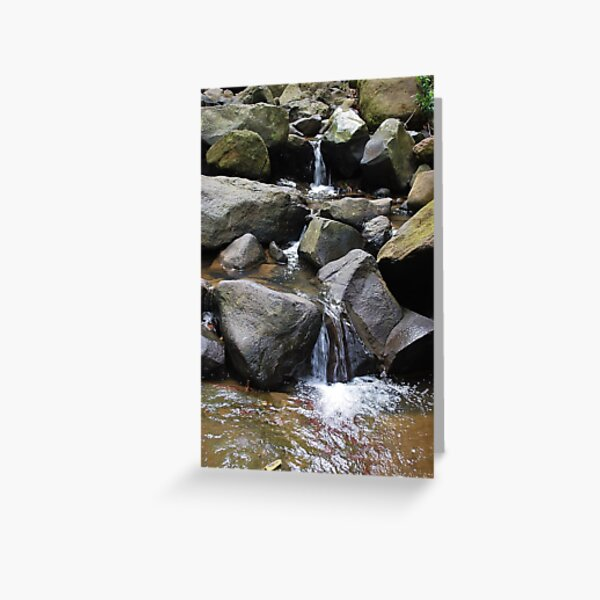 Buderim Waterfall, Sunshine Coast Queensland Greeting Card