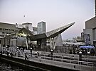 New England Aquarium - Long Wharf - Boston by Jack McCabe
