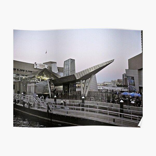 New England Aquarium - Long Wharf - Boston Poster