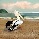 Pelican Love by Karin Taylor