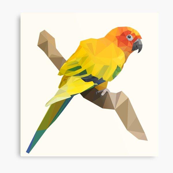 Geometric sun parakeet parrot Metal Print