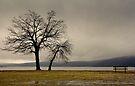 Peekskill Riverfront by JHRphotoART