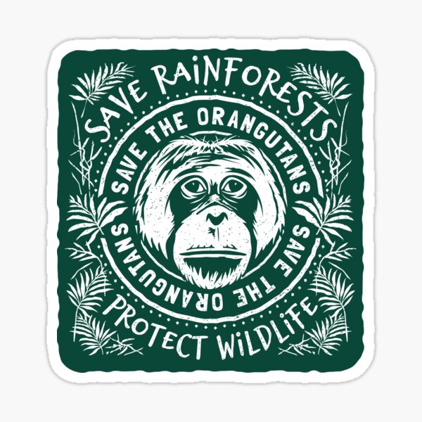 Save The Orangutan - Save Rainforests Protect Wildlife Sticker