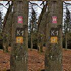 Route K1 en M by CamphuijsenArt