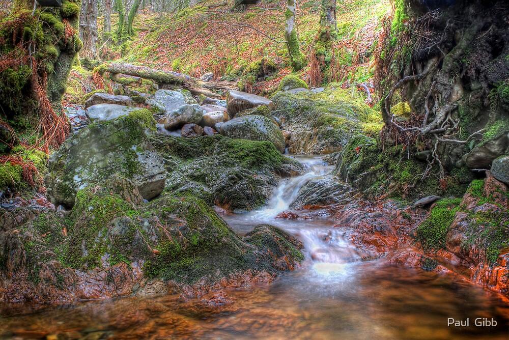 Highland Stream by Paul  Gibb