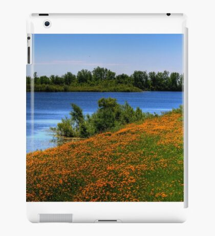 Field of Flowers - HDR iPad Case/Skin