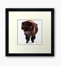 """Monarch of the Plains"" Framed Print"
