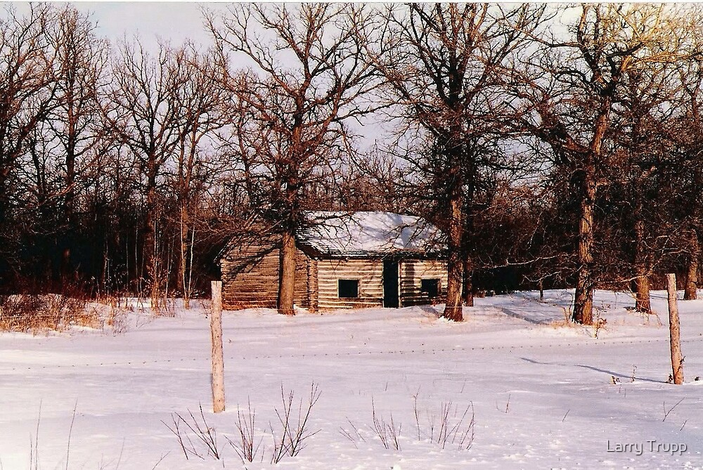 The Little Old Log Cabin by Larry Trupp