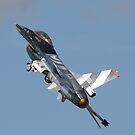 F-16 Fighting Falcon by Peter Barrett