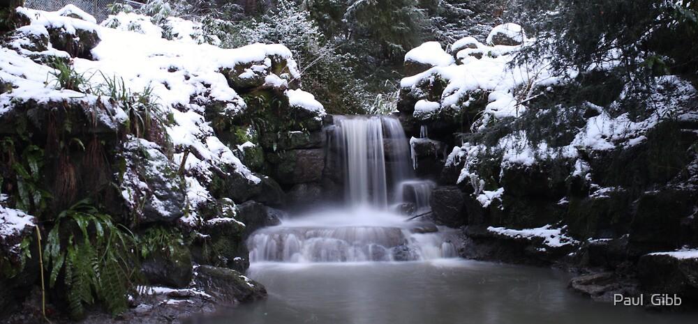 Winter Waterfall by Paul  Gibb
