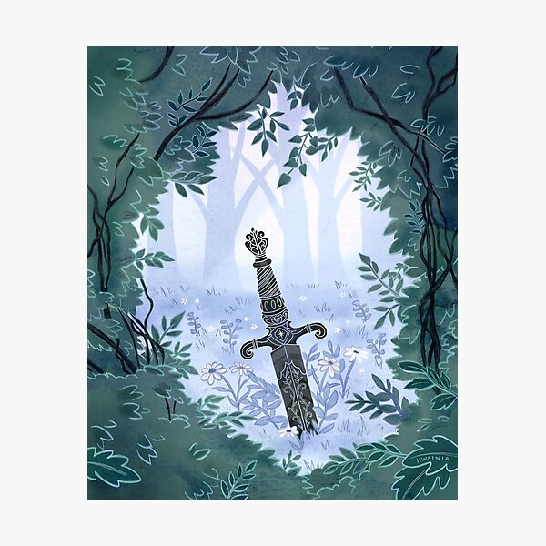 Sword in the Forest  Photographic Print