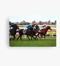 Zoomin Canvas Print