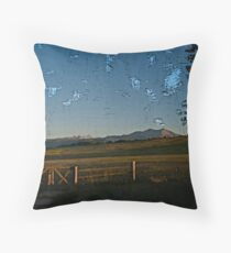 new is not always better, summerlove Throw Pillow