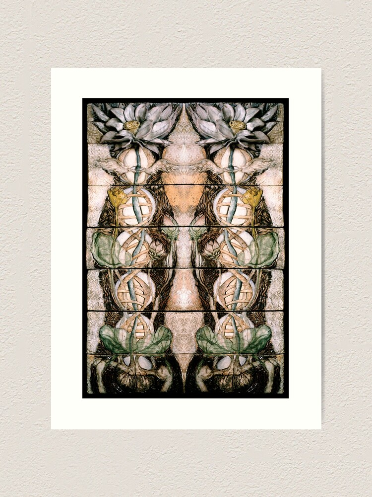 Alternate view of Double Helix Lotusing  Art Print