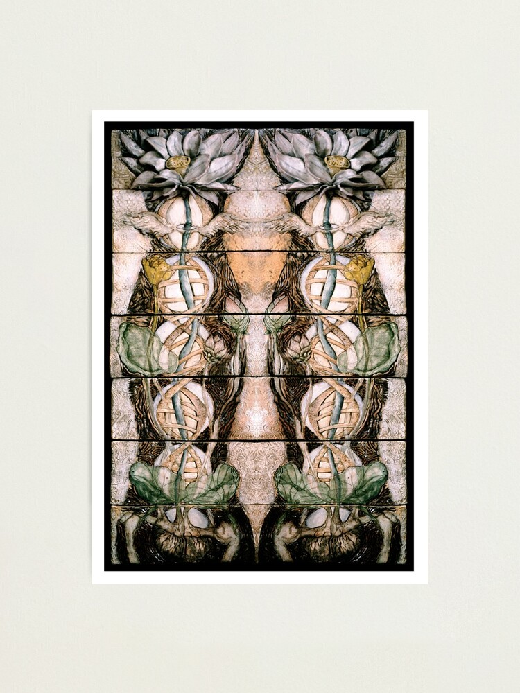 Alternate view of Double Helix Lotusing  Photographic Print