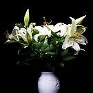 Full Bloom by Lynne Morris