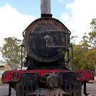 Rusting Steam Train by John Wallace