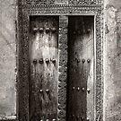 The Door by Scott Carr